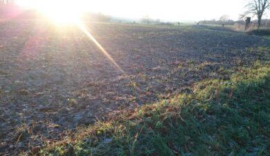 landbouwnormen foto.jpg